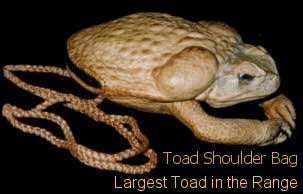 Toad Shoulder Purse With Legs On String - XL Jumbo Size Also Available In Range