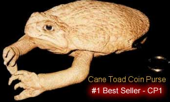 Toad Purse Best Seller