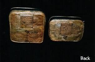 Toad Skin Belt Purse - Large Size