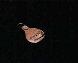 Toad Key Ring