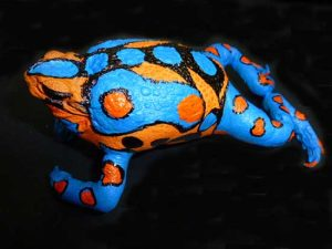 Stuffed Toad Painted Orange and Blue